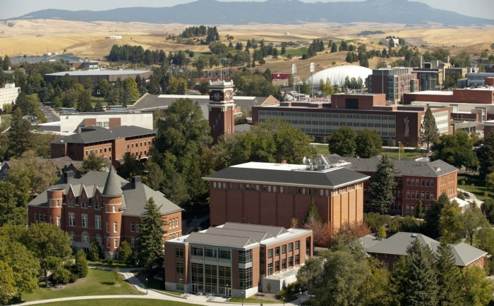 Trường Washington State University