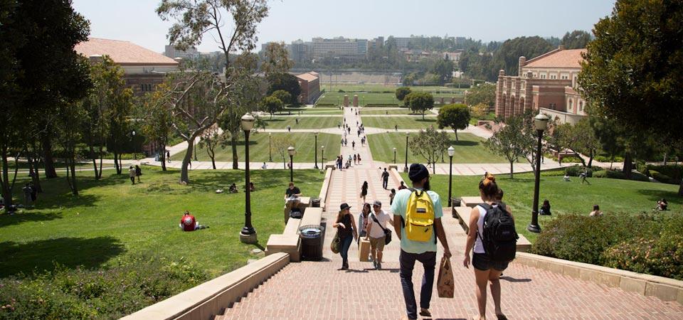 Sinh viên trường UCLA
