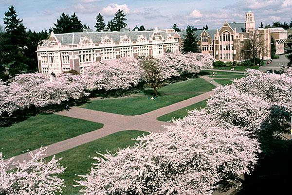 Campus of University Washington